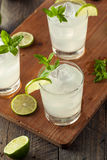 Cold Refreshing Iced Limeade Royalty Free Stock Photography