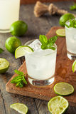 Cold Refreshing Iced Limeade Royalty Free Stock Images