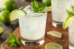 Cold Refreshing Iced Limeade. With a MInt Garnish Stock Photos