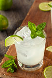 Cold Refreshing Iced Limeade Stock Images