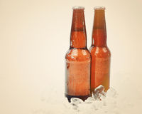 Cold Retro Beer Bottles on Ice with Copyspace Royalty Free Stock Photos