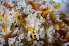 Cold rice. Rice for lunch Stock Image