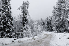 Cold Road in a Snowy Winter. Just a hard for travel road in the winter stock images