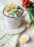 Cold russian soup with fresh vegetables, eggs and meat Stock Images