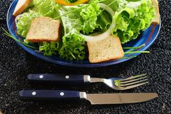 Cold salad. Mixed lettuce with pepper and onion, garlic bread on the side Stock Images