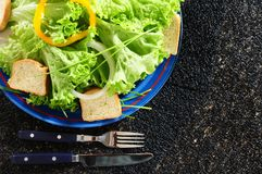 Cold salad. Mixed lettuce with pepper and onion, garlic bread on the side Royalty Free Stock Image