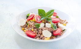 Cold salad of farro with mozzarella , tomato and tuna Royalty Free Stock Images