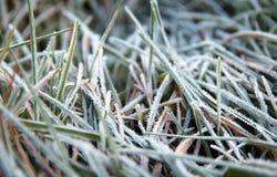 Cold season Stock Photos