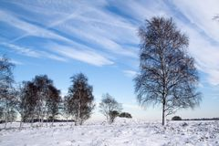 A snowy winter in Holland. A cold, snowy winter in Holland with an impressive winter sky royalty free stock photo