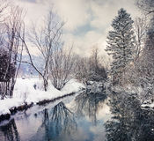 Cold and snowy winter in mountain Austria Royalty Free Stock Photography