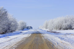 Cold Snowy Winter Road Stock Photography