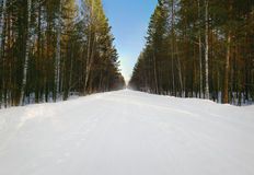 Cold and snowy winter road Royalty Free Stock Photos