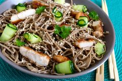 Cold soba with chicken, fresh cucumbers, sauce and sesame. Classic cold salad with buckwheat noodles. Japanese food. Traditional. Asian cuisine. Close up stock photography