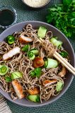 Cold soba with chicken, fresh cucumbers, sauce and sesame. Classic cold salad with buckwheat noodles. Japanese food. Traditional. Asian cuisine. Top view, flat royalty free stock photo