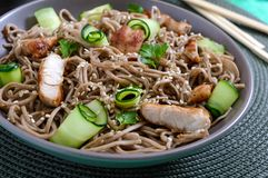 Cold soba with chicken, fresh cucumbers, sauce and sesame. Classic cold salad with buckwheat noodles. Japanese food. Traditional. Asian cuisine royalty free stock photo
