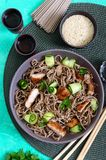Cold soba with chicken, fresh cucumbers, sauce and sesame. Classic cold salad with buckwheat noodles. Japanese food. Traditional. Asian cuisine. Top view, flat stock photo