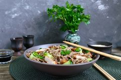 Cold soba with chicken, fresh cucumbers, sauce and sesame. Classic cold salad with buckwheat noodles. Japanese food. Traditional. Asian cuisine stock photo