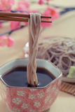 Cold soba. Traditional japanese food royalty free stock photography