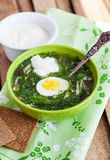 Cold sorrel soup with egg. Cold summer sorrel soup with eggs and sour cream Stock Image