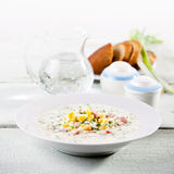 Cold soup Royalty Free Stock Photos