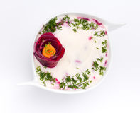 Cold soup with beets , carrots, yogurt and fresh Royalty Free Stock Images