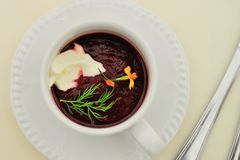 Cold soup borscht (borshch) Royalty Free Stock Photos