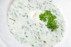 Cold soup with chopped vegetables and meat Stock Photography