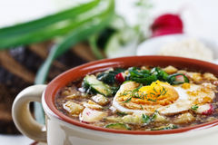 Cold soup with eggs, cucumber and greens Stock Image