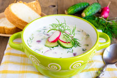 Cold soup with ingredients Stock Image
