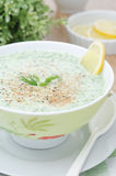 Cold soup with kefir and fresh herbs closeup selective focus Royalty Free Stock Images