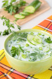Cold soup made ​​from yogurt and cucumber Royalty Free Stock Photo