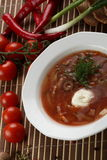 Cold soup with meat Royalty Free Stock Photography