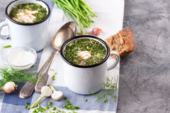 Cold Soup Okroshka in enamel cup and raw ingredients on grey stone table royalty free stock photography