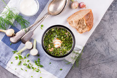 Cold Soup Okroshka in enamel cup and raw ingredients on grey stone table stock image