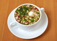 Cold soup, okroshka Stock Photography