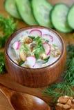 Cold soup Tarator with kefir, cucumber and radish stock image