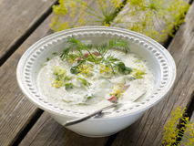 Cold soup Royalty Free Stock Photos