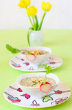Cold soup with vegetables and meat Stock Image
