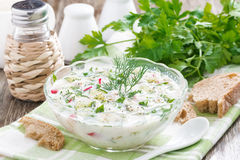 Cold Soup With Fresh Vegetables And Kefir (okroshka) In A Bowl Stock Image