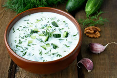 Cold soup with yogurt. Cucumbers and dill Royalty Free Stock Photos