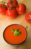 Cold Spanish soup gazpacho Royalty Free Stock Image