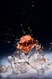 Cold splashing water drink Royalty Free Stock Photography
