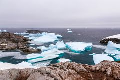 Cold still waters of antarctic sea lagoon with drifting blue ice. Bergs among rocky cliffs of Peterman island, Antarctica