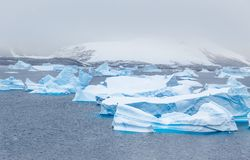 Cold still waters of antarctic sea lagoon with drifting huge blu. E icebergs, Port Charcot, Booth island, Antarctic peninsula Royalty Free Stock Photo
