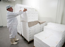Cold storage worker Royalty Free Stock Images