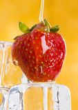 Cold strawberries with honey. Honey is a sweet and viscous fluid produced by bees and other insects from the nectar of flowers. Honey is significantly sweeter Royalty Free Stock Image