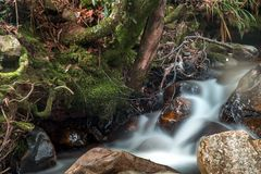 Cold stream of water in a mountain creek stock photo