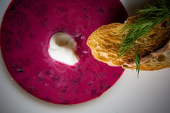 Cold summer Beets soup Royalty Free Stock Images