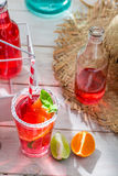 Cold summer drink in bottle Stock Image