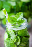 Cold summer drink  - cucumbers with peppermint cocktail Royalty Free Stock Image